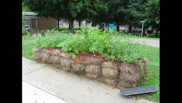 Straw Bale Gardening Offers Options For Gardeners Overcome Poor Soil And Limited Space The